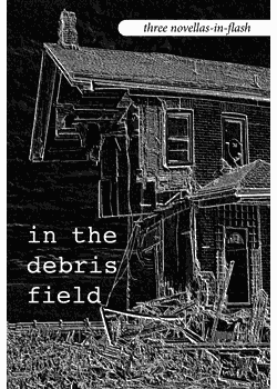 In the Debris Field : Three Novellas-In-Flash